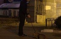 В Киеве заметили мужчину с леопардом на поводке