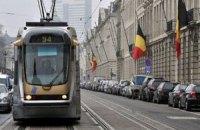 Власти Брюсселя обвинили мышей в дорожных пробках