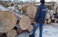 """В Житомирской области нашли склад """"черных"""" лесорубов с 2 тыс. бревен дуба"""