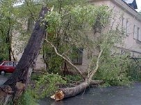 Негода знеструмила населені пункти у п'яти областях