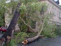 Непогода обесточила населенные пункты в пяти областях