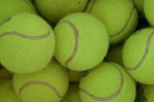 Мельцер выбил лучшего теннисиста мира