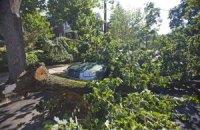 Стихия в Житомирской области убила человека и повредила дома