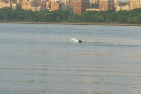 Антикварный самолет упал в реку Гудзон в Нью-Йорке