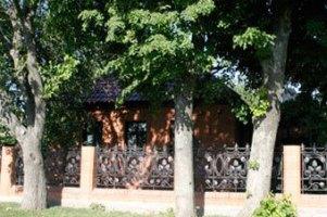 У дома Ющенко его однопартиец добивается зарплаты голодовкой