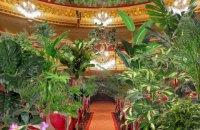 Барселонський оперний театр провів концерт для кімнатних рослин, які подарують медикам