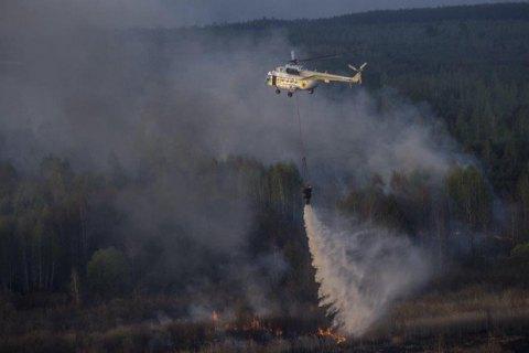 В Киевской области горит лес