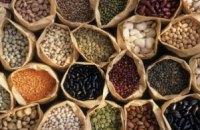 Законопроект о продовольственной безопасности может быть внесен в Раду до конца года