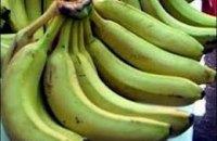 Испанская полиция перехватила шесть тонн кокаина, спрятанного в грузе бананов