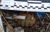 В Донецкой области мужчина нашел гранаты в куче мусора