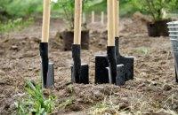 Представители власти, бизнеса и эксперты обсудят создание в Украине рынка земель с/х назначения