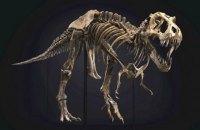 В США на аукционе продали скелет тиранозавра за рекордные 31,8 млн долларов