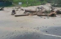 348 населених пунктів залишилися без електрики через сильний вітер і дощ