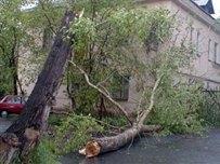 Непогода обесточила 226 населенных пунктов
