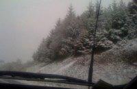 Непогода обесточила треть Житомирской области