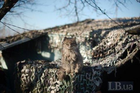 Сутки на Донбассе прошли без потерь
