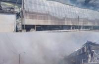 На птахофабриці поблизу Василькова сталася велика пожежа (оновлено)