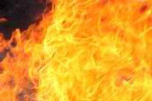 Три донецких туриста чуть не сожгли лес под Ялтой
