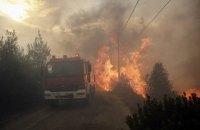 Греческая полиция задержала подозреваемого в поджоге леса
