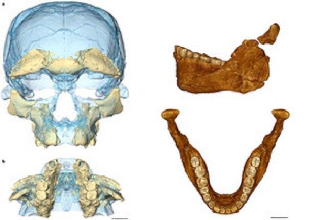 Нынешние люди появились 300 000 лет назад— Палеонтологи