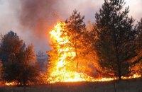 Штаб ООС назвав навмисний підпал причиною пожеж на Донбасі