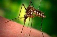В Николаеве в июне зарегистрировали три случая малярии
