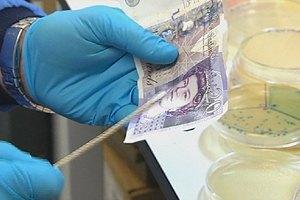 Ученые подсчитали, сколько бактерий живет на бумажных деньгах