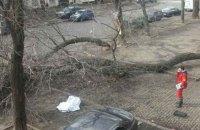 У результаті урагану в Одесі загинула жінка