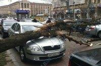 На Крещатике ветер повалил дерево на три автомобиля