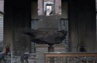 Выживут только метеориты: чему нас учит пожар в Национальном музее Бразилии