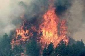 Від пожеж у Хакасії постраждали близько 5 тис. осіб