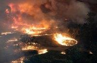 У столиці Австралії через пожежі оголосили надзвичайний стан