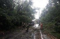 У Запорізькій області через негоду знеструмлено 51 населений пункт