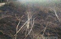 В Киевской области погибло два человека из-за возгорания сухостоя