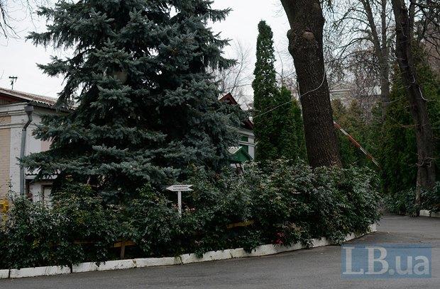 По соседству - усадьба Пимоненко