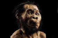 В ЮАР обнаружен новый вид родственника человека