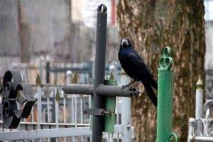 В Украине планируют создать Национальное военное кладбище