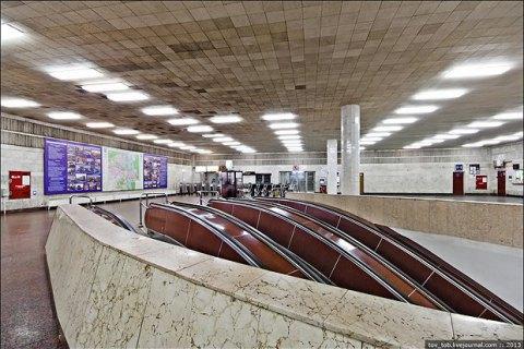 В киевском метро откроется фотовыставка про животных в АТО