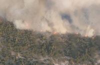 На военном полигоне в Черниговской области загорелся лес