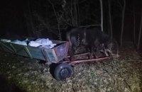 Троє чоловіків намагалися перевезти до Білорусі 800 кг сала на підводах