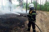 В Киеве и области объявлен наивысший уровень пожарной опасности