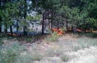В Полтавской области за сутки выгорело более 38 га леса