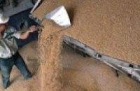 Запасы зерна в стране на треть больше прошлогодних