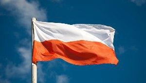 Від початку року Польща отримала від українців понад 600 заявок на політпритулок