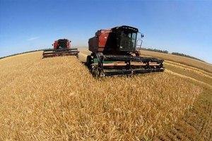 Аномальная жара убивает урожай, - метеоролог