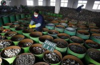Китайский вызов для мировой экономики
