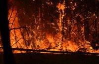 МВС евакуює людей через пожежу в Чорнобильській зоні