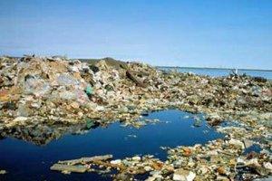 В Тихом океане мусорные острова выросли в 100 раз