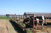 Розвиток аграрного господарства — шлях до успіху: у Гадяцькому районі підтримують сільгоспвиробників