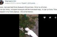 17-летнюю харьковчанку отправили под суд за видео с убийством котенка